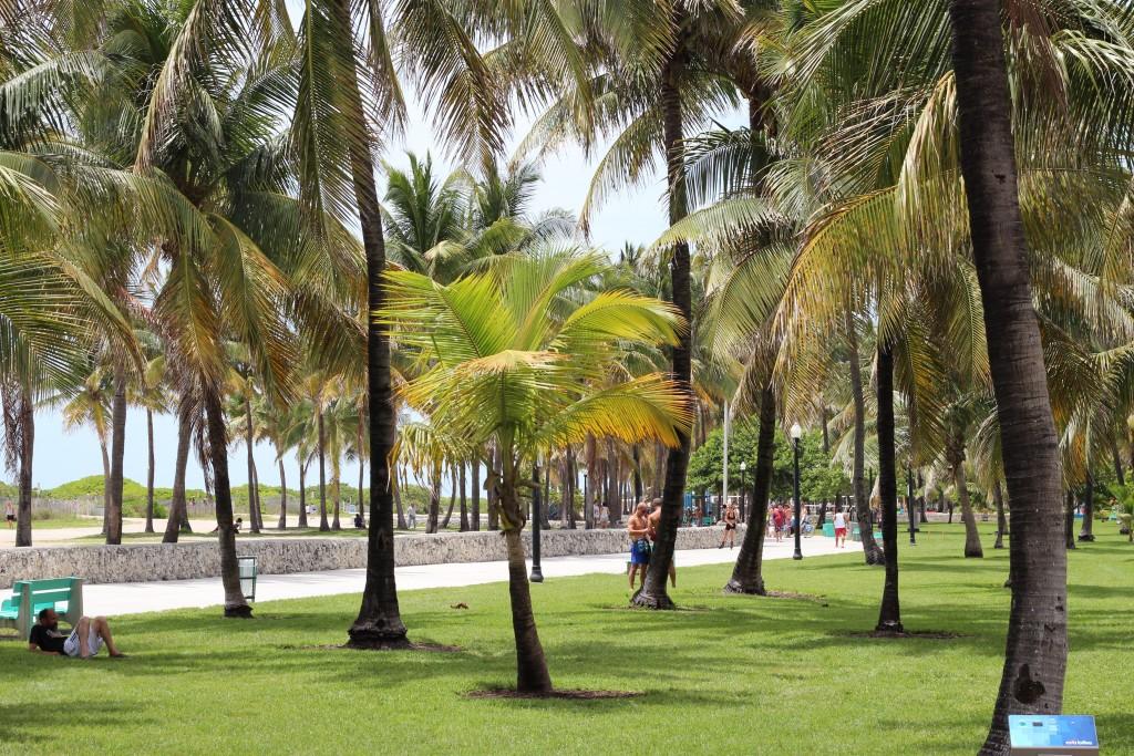 South Beach, Lummus Park bardzo przypomina Palisades Park w Santa Monica, Kalifornia