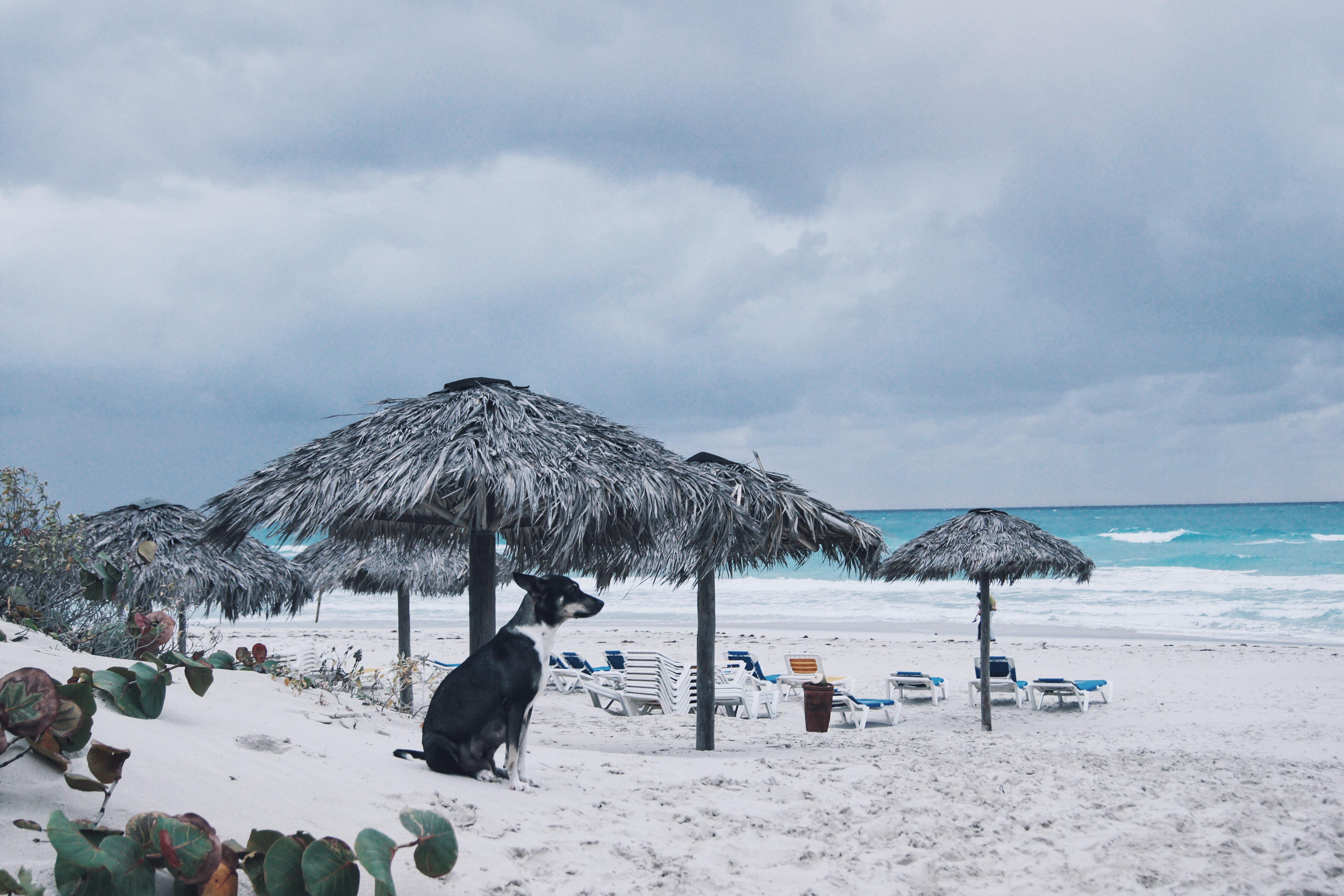 Kuba, Varadero